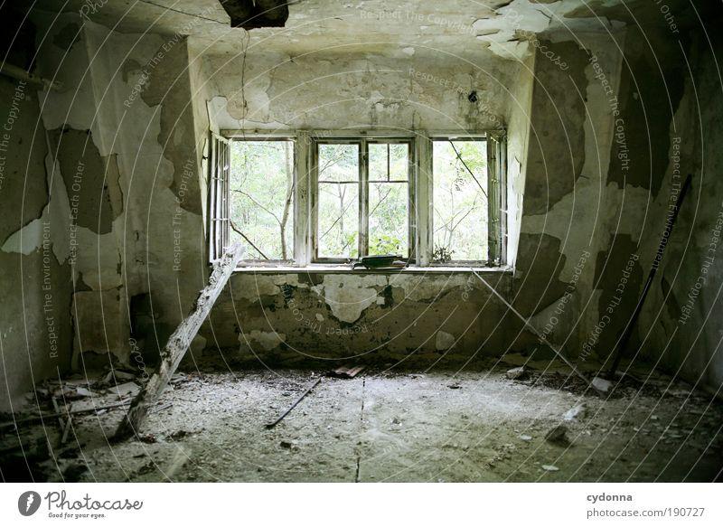 Vergessen Häusliches Leben Hausbau Renovieren Umzug (Wohnungswechsel) Raum Umwelt Natur Mauer Wand Fassade Fenster Einsamkeit Endzeitstimmung geheimnisvoll