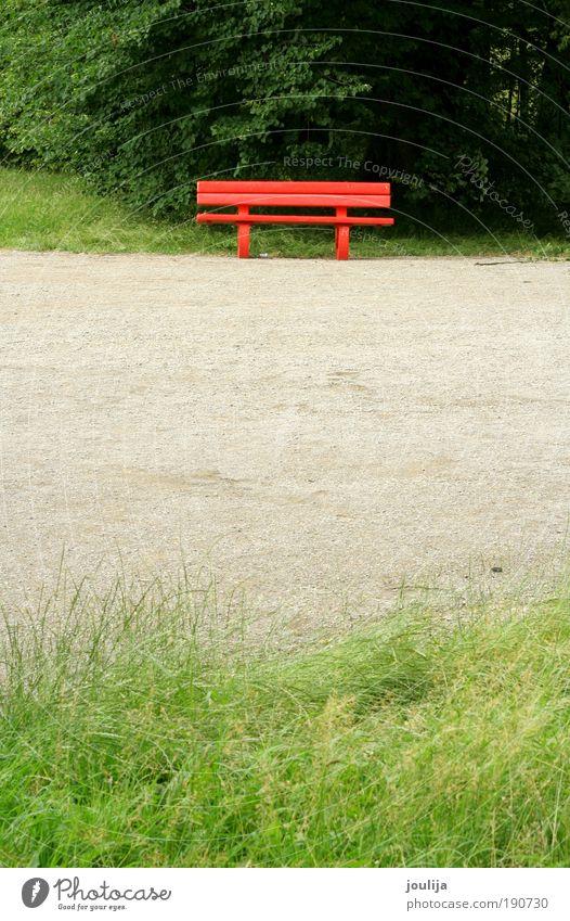 Natur Baum rot Sommer Erholung Gras Frühling Garten Park Landschaft hell Erde