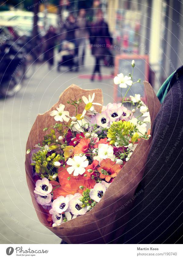 date mit anstand Mensch Blume Farbe Gefühle warten außergewöhnlich frisch ästhetisch Blumenstrauß Duft Geruch haltend
