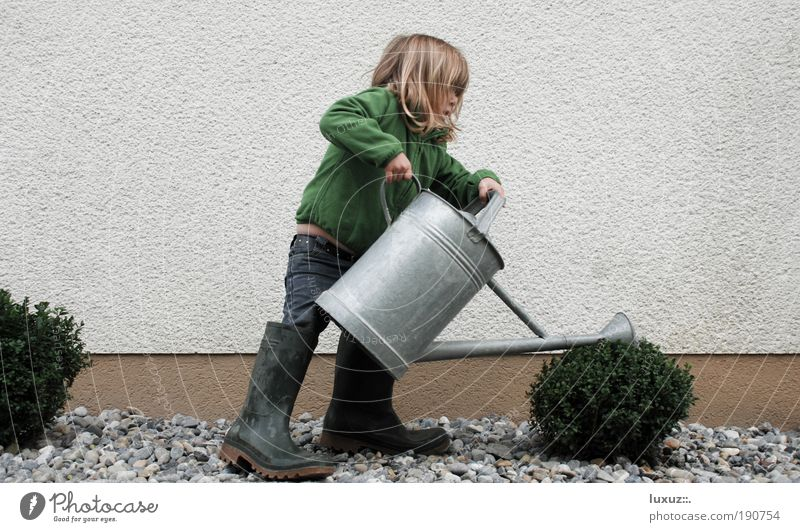 Wachstum Kind grün Wasser Pflanze Mädchen Haus Umwelt Frühling Arbeit & Erwerbstätigkeit Garten Kindheit lernen Hilfsbereitschaft Beruf Mensch