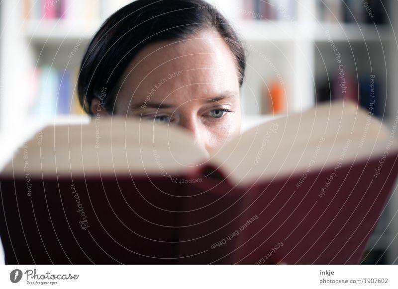 lesen Mensch Frau Gesicht Erwachsene Leben Lifestyle Freizeit & Hobby 45-60 Jahre Buch lernen Neugier Bildung Erwachsenenbildung Inspiration Interesse
