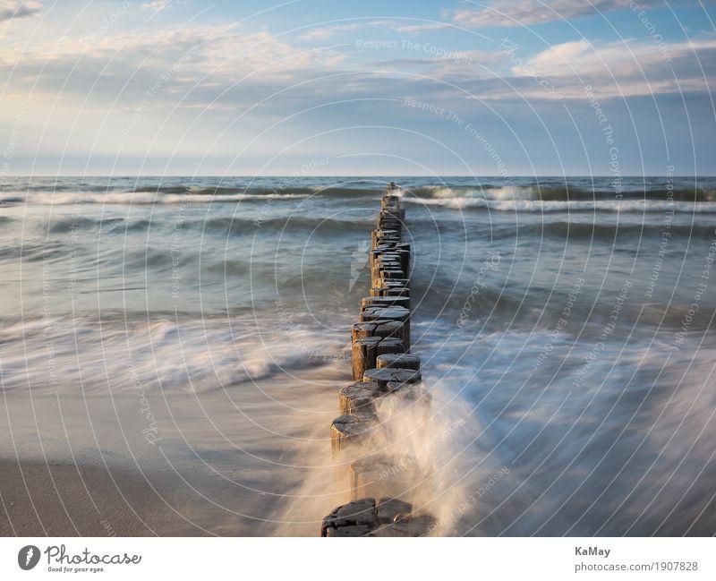 Vom Meer umspülte Buhnen ruhig Ferien & Urlaub & Reisen Freiheit Sommer Wellen Natur Landschaft Wasser Wolken Horizont Küste Ostsee blau Gewässer Deutschland