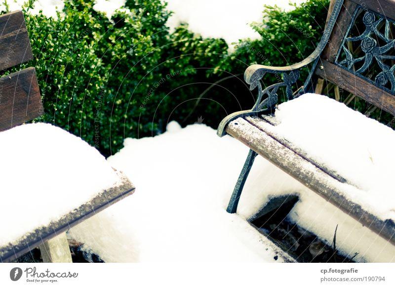 Warteschleife Winter Schnee Garten Möbel Sträucher Grünpflanze Bank Sehnsucht Einsamkeit Vergänglichkeit Außenaufnahme