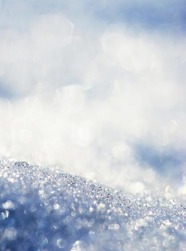 *500* Flocken Natur weiß Landschaft Winter kalt Berge u. Gebirge hell Schneefall glänzend Wetter leuchten ästhetisch Schönes Wetter Alpen gefroren