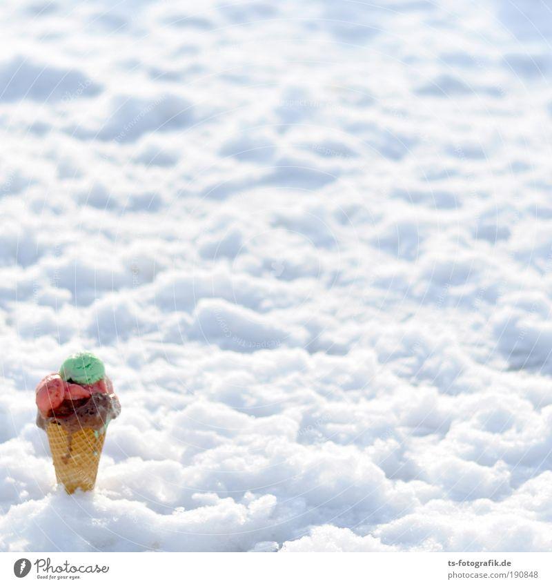 Back to the roots Speiseeis Eiswaffel Waffel Schokoladeneis Erdbeereis Waldmeister Eisverkäufer Eisdiele Winter Frost Schnee frieren Coolness kalt süß weiß