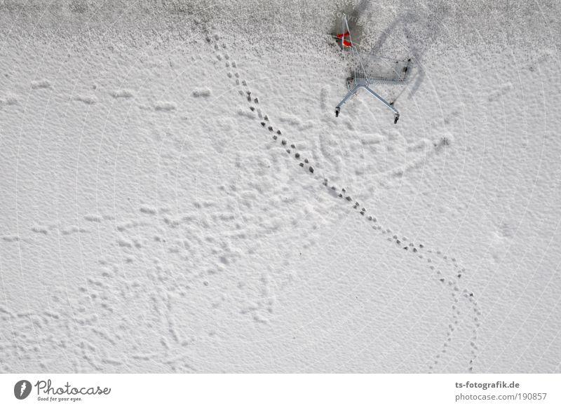 Rallye Dakar Reichtum Winter Schnee Eis Frost Fährte Abdruck Spuren Einkaufswagen Einkaufszentrum Einkaufskorb Harz fallen gehen Coolness trashig silber weiß