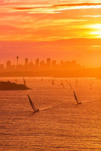 In Sonnenaufgang segeln Sport Sportler Publikum Sportveranstaltung Pokal Segeln Natur Sonnenuntergang Sonnenlicht Schönes Wetter Wellen Küste seilhüpfen Ferne