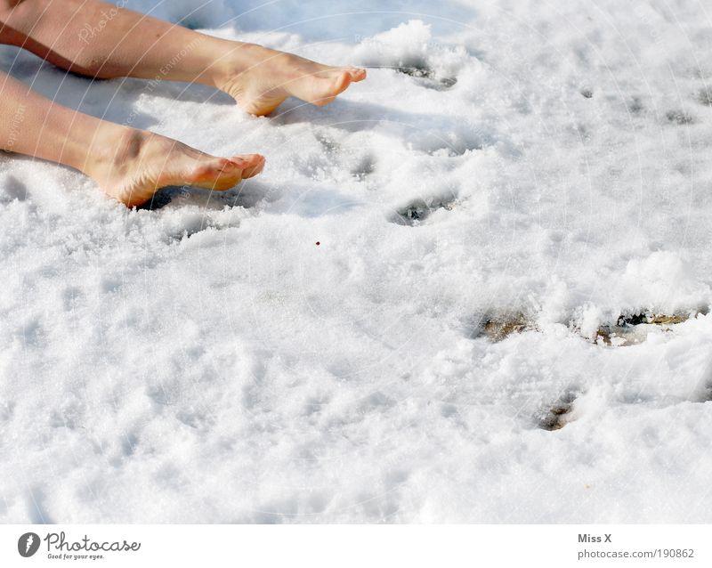 Der Gärtner wars Beine Fuß 1 Mensch Winter Klima Wetter Eis Frost Schnee Garten Park Wiese kalt verrückt Trauer Tod Liebeskummer Müdigkeit Mord Mordlust