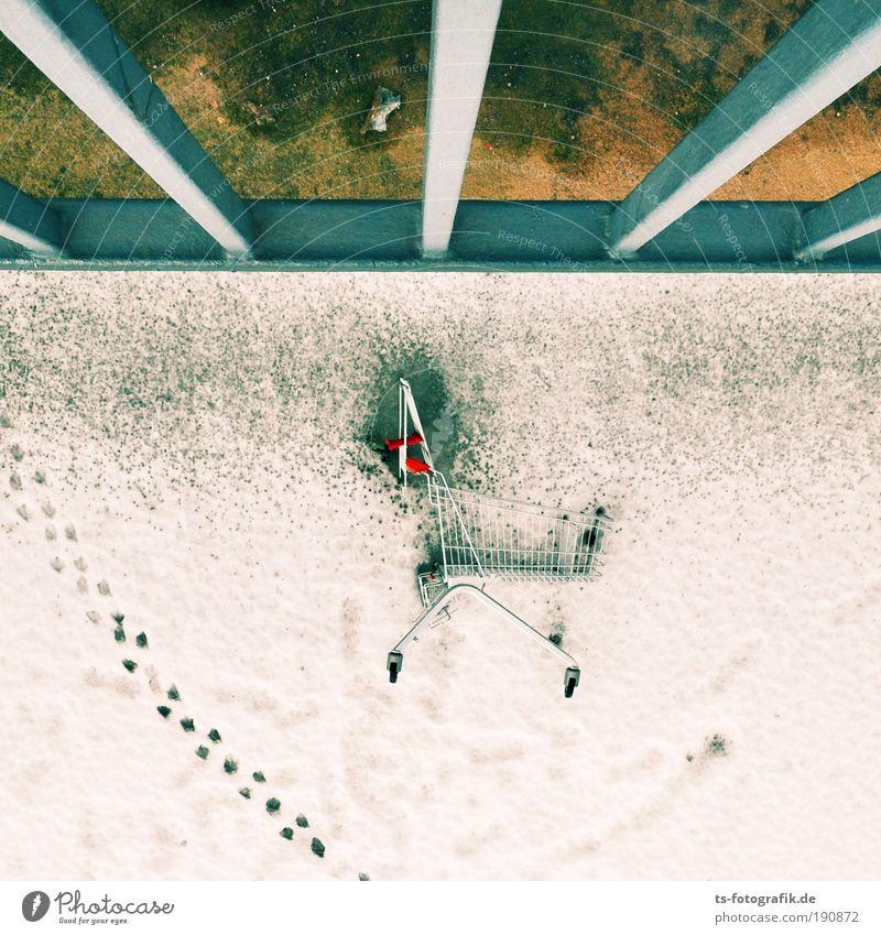 Per Karte oder bar? Einkaufswagen Einkaufszentrum Winter Schnee Eis Frost Brücke Fährte Spuren fallen frieren liegen werfen Coolness unten blau grün weiß