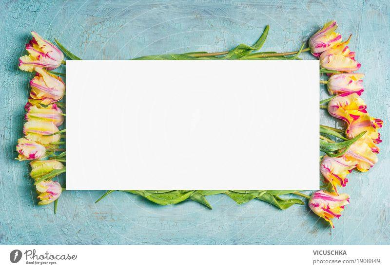 Frühling Hintergrund mit Papageien Tulpen Natur Pflanze Blume Blatt Freude gelb Blüte Liebe Hintergrundbild Stil Feste & Feiern Design Dekoration & Verzierung