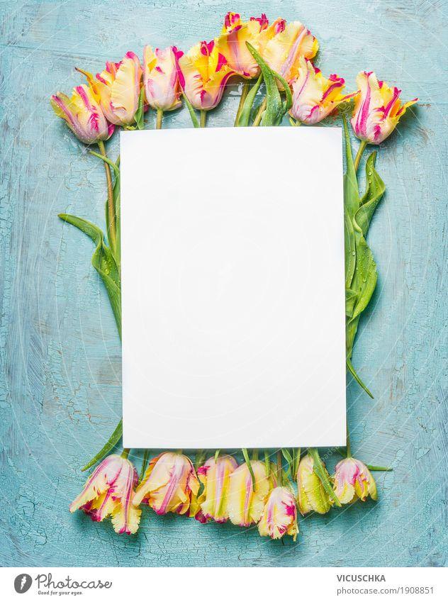 Tulpen auf blauem Hintergrund mit leerem Blatt Stil Design Dekoration & Verzierung Feste & Feiern Valentinstag Muttertag Geburtstag Natur Pflanze Frühling Blüte