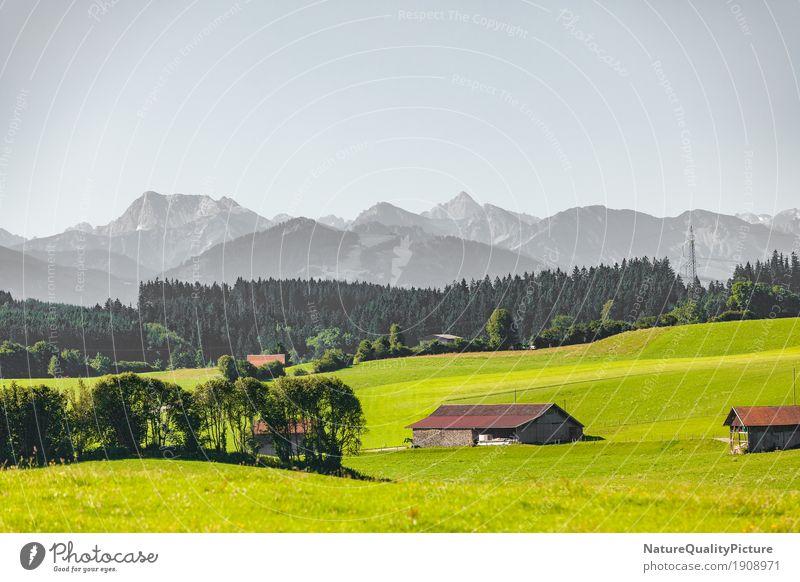 unterallgau Himmel Natur Ferien & Urlaub & Reisen alt Sommer Baum Landschaft Ferne Wald Berge u. Gebirge Umwelt Frühling Wiese außergewöhnlich Deutschland