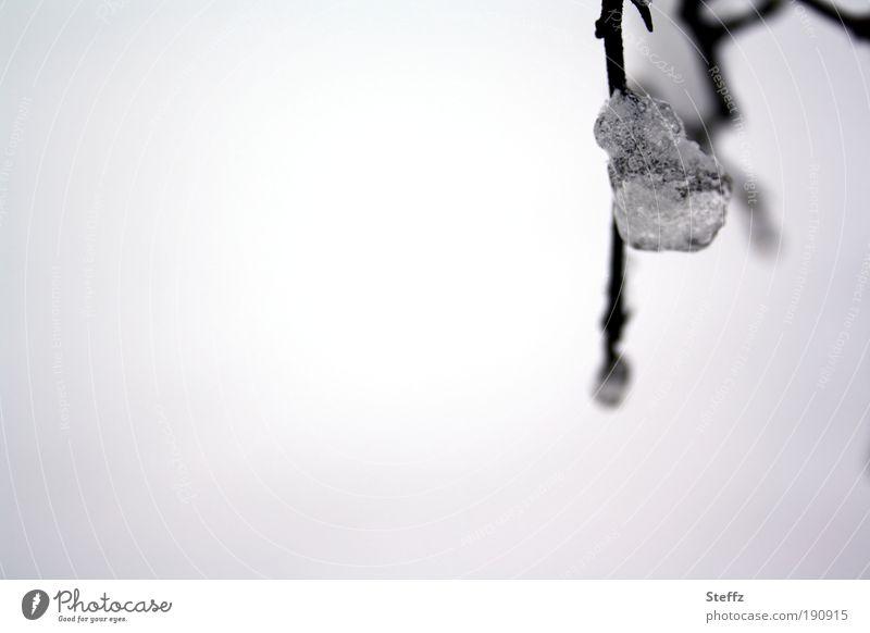 Wintergefühle Eiskristall Eisklumpen Frost Wintertag Winterstimmung gefroren grau melancholisch Winterlicht frieren kalt silbergrau graue Farbe