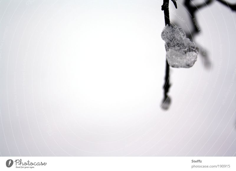 Wintergefühle Frost Eis Eiskristall Kristall frieren kalt grau silber weiß melancholisch Winterstimmung gefroren minimalistisch Kristalle natürlich Winterlicht