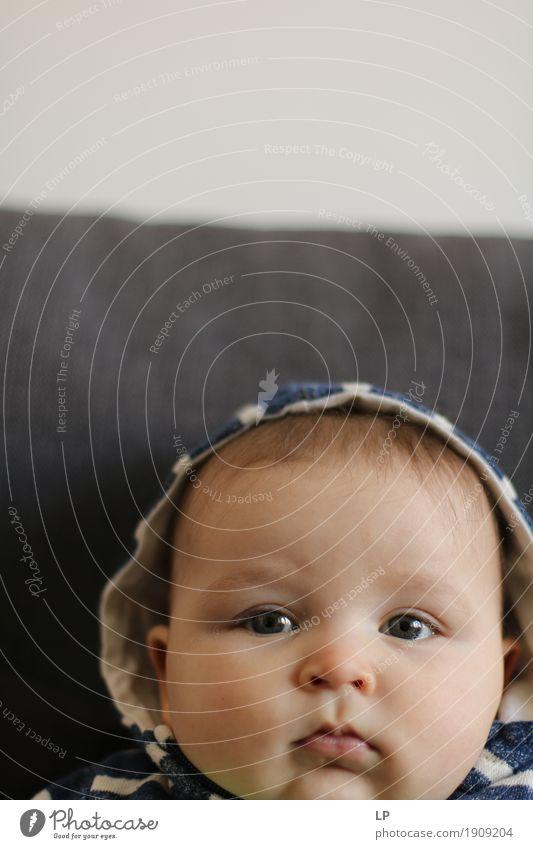 weiches Aussehen Lifestyle Freude Mensch Baby Kleinkind Kindheit Kopf Gesicht 0-12 Monate beobachten Gefühle Gelassenheit Wachstum eingehender Blick unschuldig