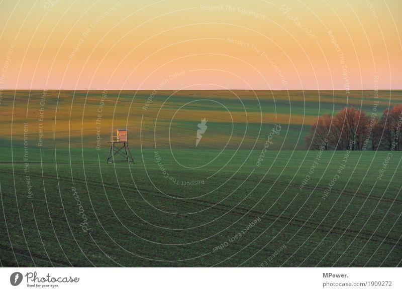 hochsitz Umwelt Natur Landschaft Himmel Wolkenloser Himmel Klima Schönes Wetter ästhetisch Hochsitz Feld Herbst Waldboden Farbverlauf Gras Jagd Farbfoto