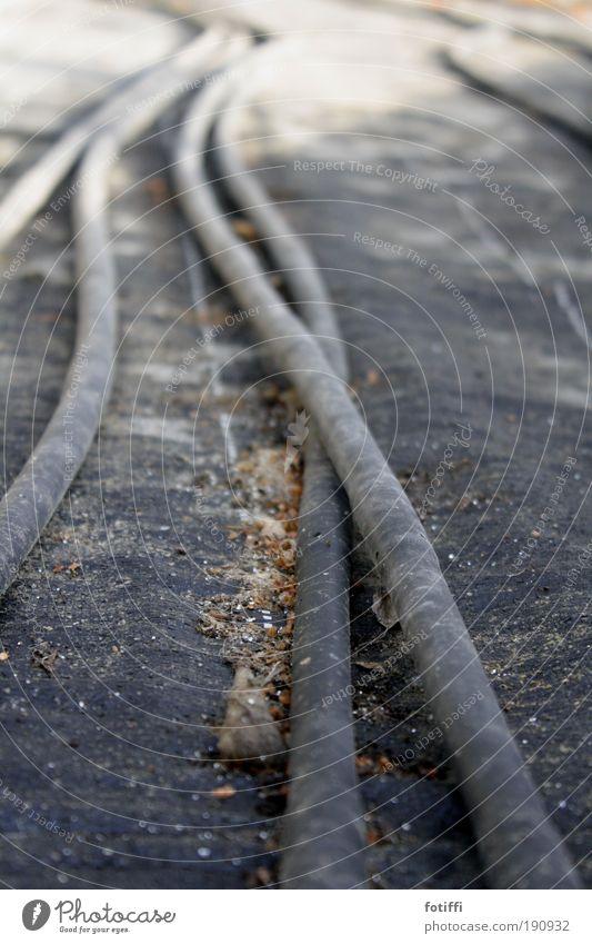 tentakel-spektakel alt Winter ruhig Einsamkeit grau hell dreckig warten liegen authentisch Kabel Sehnsucht Kunststoff lang Kontakt stark