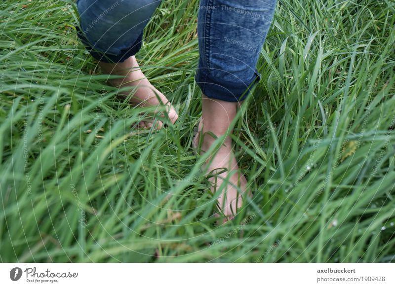 barfuß im Gras Gesundheit Wohlgefühl Freizeit & Hobby Mensch feminin Mädchen Junge Frau Jugendliche Erwachsene Fuß 1 18-30 Jahre Natur Wiese Jeanshose gehen