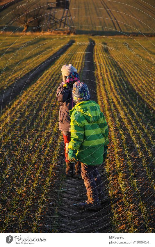 verstecker Mensch Kind Mädchen Junge Geschwister Familie & Verwandtschaft Kindheit 2 3-8 Jahre Umwelt Natur Landschaft Sonnenaufgang Sonnenuntergang Herbst