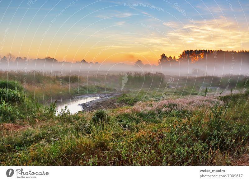 Himmel Natur Ferien & Urlaub & Reisen Sommer grün Baum Landschaft Wald gelb Wiese Gras Tourismus Nebel Ausflug frisch Aussicht