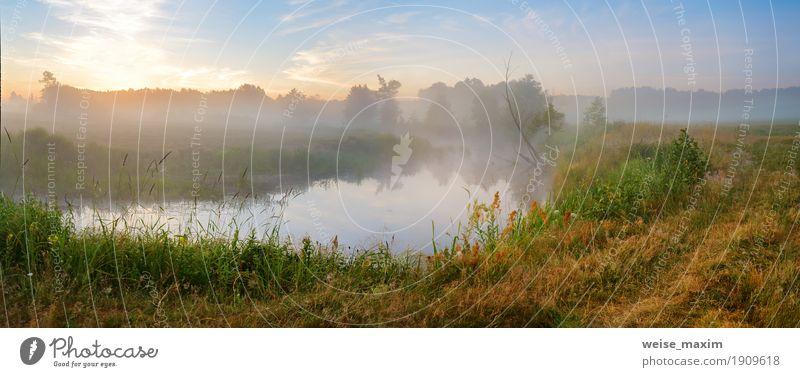 Natur Ferien & Urlaub & Reisen Sommer grün Baum Landschaft Wald Wiese Gras Freiheit See Tourismus Nebel Aussicht Sträucher Europa