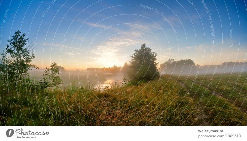 Nebelhafter Sonnenaufgang des Sommers auf dem Fluss. Nebeliger Fluss morgens Ferien & Urlaub & Reisen Ausflug Abenteuer Natur Landschaft Himmel Schönes Wetter