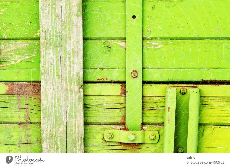 verbrettert Holz Metall alt eckig kaputt grün innovativ Ordnung Qualität Verfall Versicherung Zusammenhalt Holzbrett Wand Bordwand Anhänger Schraube Halterung