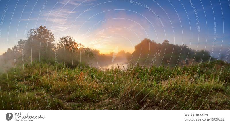 Himmel Ferien & Urlaub & Reisen Sommer grün Baum Wald Wiese Gras Freiheit See Tourismus Nebel frisch Aussicht Sträucher Europa