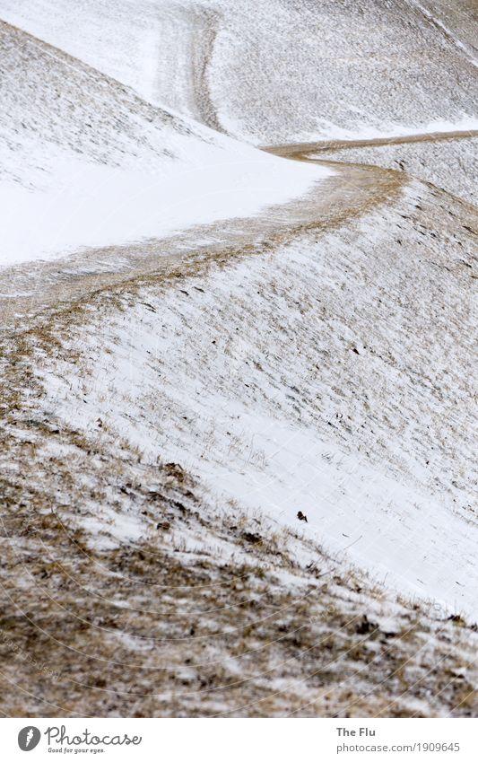 Alle Wege führen nach Rom Ausflug Winter Schnee Winterurlaub Berge u. Gebirge wandern Landschaft Eis Frost Schneefall Gras Wiese Hügel Alpen Italien Südtirol