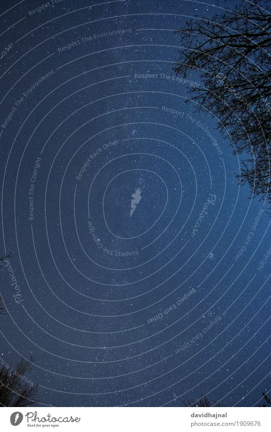 Nachthimmel Himmel Natur blau Baum Ferne Winter Umwelt Freiheit Freizeit & Hobby wandern ästhetisch fantastisch beobachten Stern Urelemente Unendlichkeit