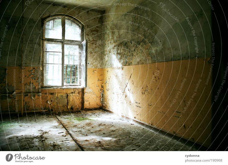 Natürliche Lichtquelle schön ruhig Einsamkeit Leben Wand Stil Fenster träumen Mauer Gebäude Raum Design Energie Zeit Lifestyle Wandel & Veränderung
