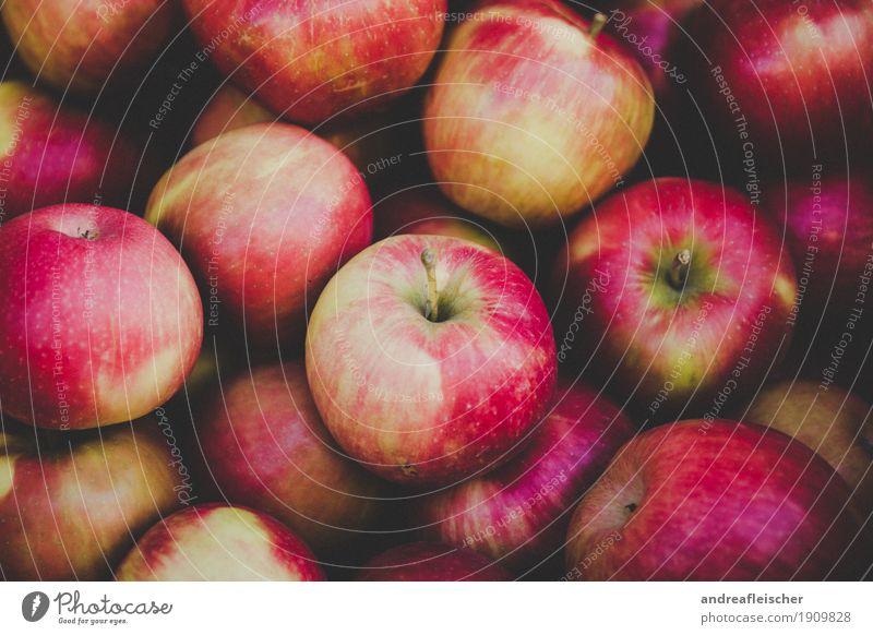 Foto-ID: 1909828 Gesunde Ernährung rot Umwelt Lifestyle Gesundheit Garten Lebensmittel Gesundheitswesen Frucht Zufriedenheit Ausflug frisch kaufen Wohlgefühl