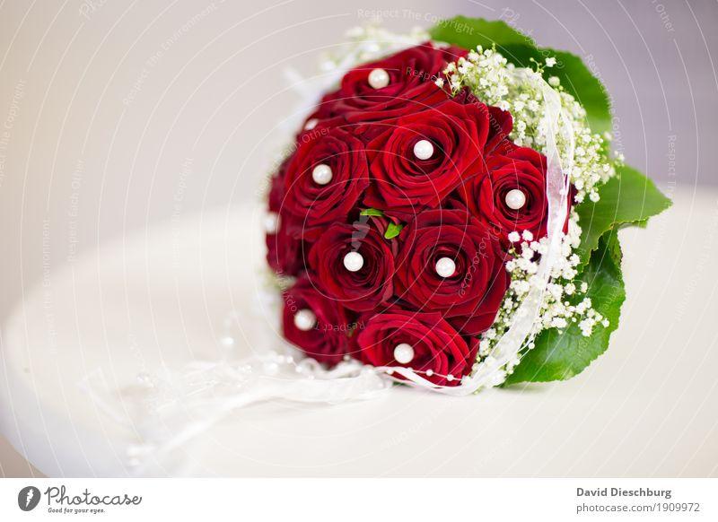 Brautstrauß Feste & Feiern Hochzeit Blume Zeichen grün rot weiß Liebe Verliebtheit Treue Romantik Blumenstrauß Hochzeitstag (Jahrestag) Rose perlen