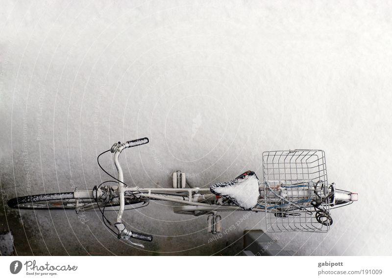 winter ohne ende Fahrrad kalt Winter Eis Frost Platz fahrradkorb Fahrradsattel Coolness Verkehrsmittel weiß Leben Mobilität Nostalgie ruhig gefroren