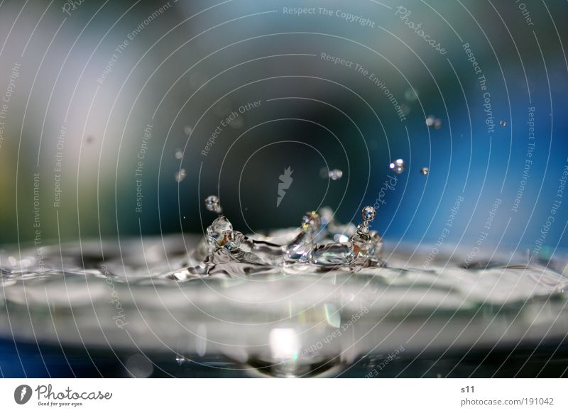 blue splash blau Wasser kalt Bewegung springen Kraft elegant glänzend nass frisch Wassertropfen Coolness Unschärfe Vergänglichkeit trinken Sauberkeit