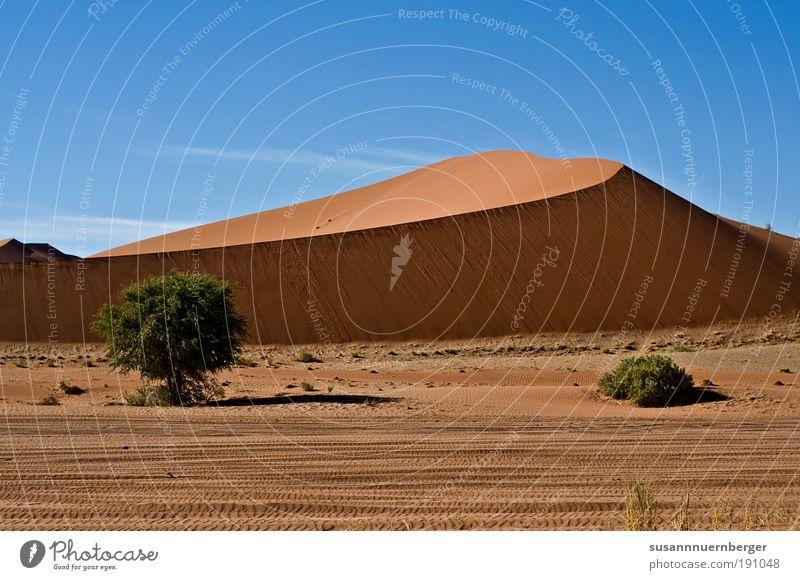 """desert Umwelt Natur Landschaft Pflanze Tier Urelemente Sand Luft Himmel Wolkenloser Himmel Sonne Sommer Wärme Wüste """"Namib Namibia Dühne"""" Zufriedenheit Freiheit"""