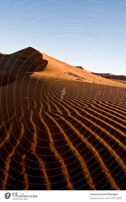 red sand Umwelt Natur Landschaft Pflanze Urelemente Sand Luft Himmel Wolkenloser Himmel Sommer Wüste Namib alt exotisch frei Wärme blau gelb gold rot Einigkeit