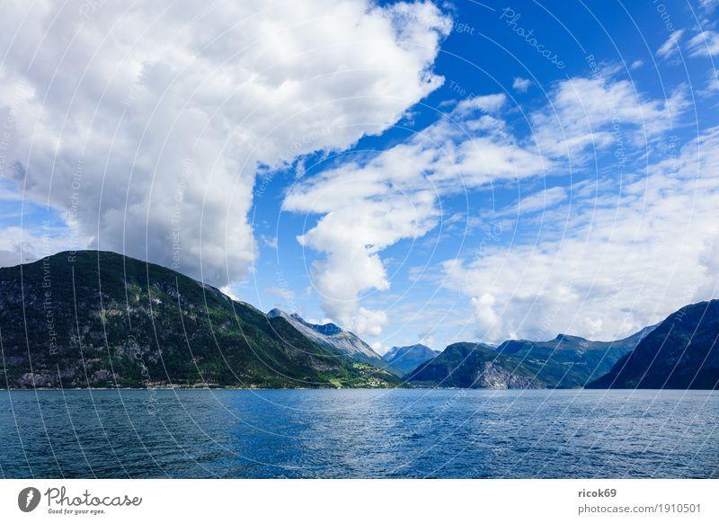 Blick auf den Storfjord in Norwegen Erholung Ferien & Urlaub & Reisen Tourismus Berge u. Gebirge Natur Landschaft Wasser Wolken Fjord Idylle Norddal