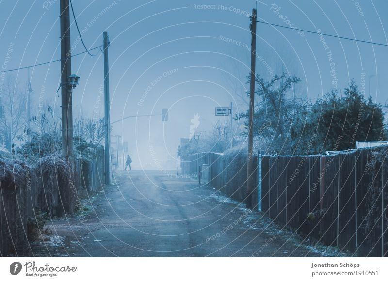 Weg in Kleingarten bei Nebel im Winter Mensch 1 Natur Pflanze Herbst Traurigkeit kalt Sorge Trauer Unlust Einsamkeit Vergänglichkeit Erfurt Frost Jahreszeiten