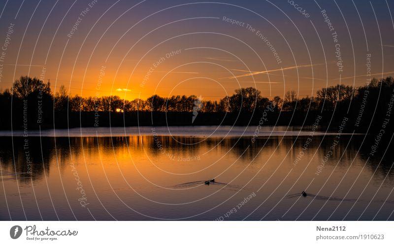 Ade Sommer Himmel Natur Wasser Landschaft Erholung ruhig Ferne Wärme Umwelt Glück See orange Wetter gold authentisch Schönes Wetter