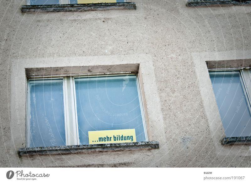 Aussicht alt Haus Fenster Wand Mauer grau Linie Schule Fassade authentisch Schriftzeichen verrückt Beton Hinweisschild Zukunft
