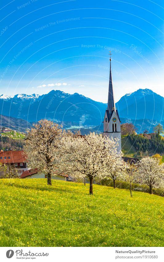 fraxern Ferien & Urlaub & Reisen Tourismus Ferne Sommer Sommerurlaub Architektur Kultur Natur Sonnenlicht Frühling Schönes Wetter Baum Blume Gras Blüte