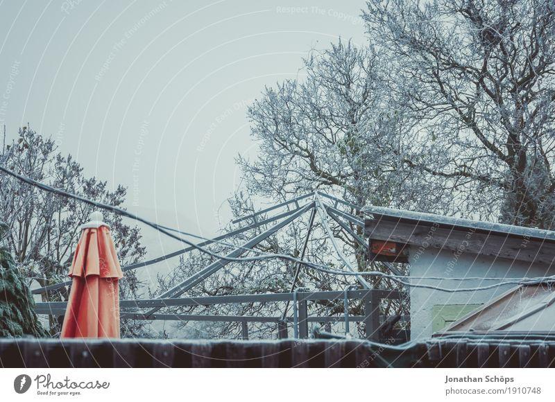 Väterchen Frost V Natur Pflanze weiß Baum Einsamkeit Winter kalt Traurigkeit Herbst Schnee Garten orange Nebel Vergänglichkeit Trauer Kabel