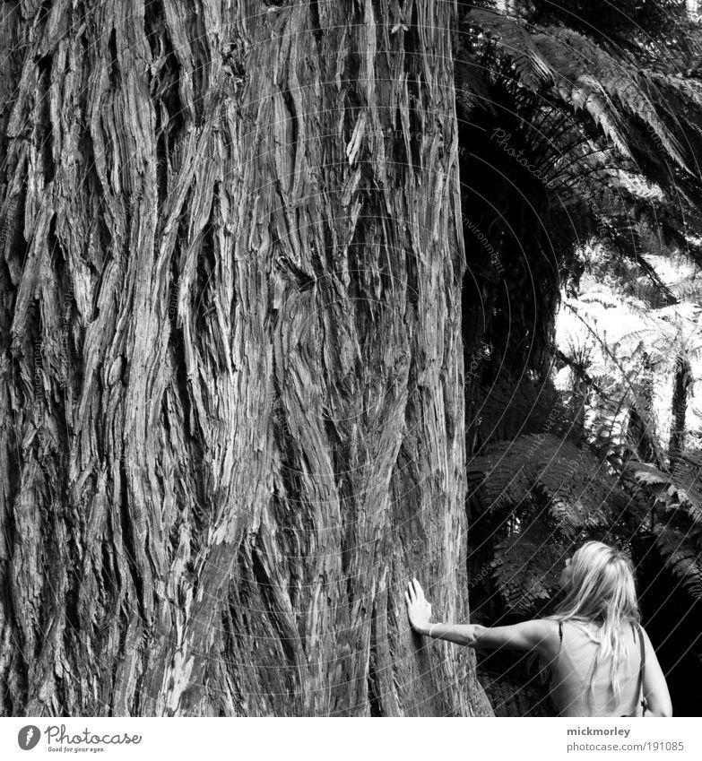 Feeling Mother Nature Frau Natur Ferien & Urlaub & Reisen Jugendliche Pflanze Erholung 18-30 Jahre Erwachsene Umwelt Leben feminin Gesundheit Glück Zufriedenheit ästhetisch Kommunizieren