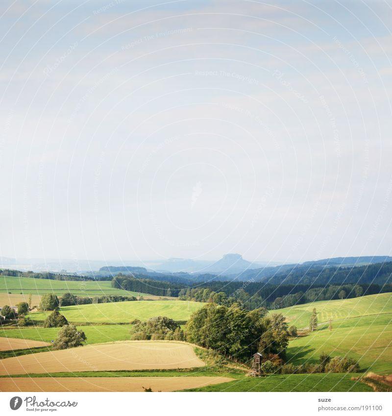 Sachsen Natur Baum Ferien & Urlaub & Reisen Wald Ferne Umwelt Wiese Landschaft Feld natürlich Klima Ausflug Tourismus Wachstum Europa Deutschland