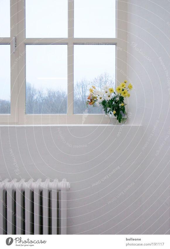 Viel Weiss und ein wenig Gelb Stil Innenarchitektur Dekoration & Verzierung Kunst Ausstellung Kunstwerk Pflanze Blume Menschenleer Architektur Mauer Wand