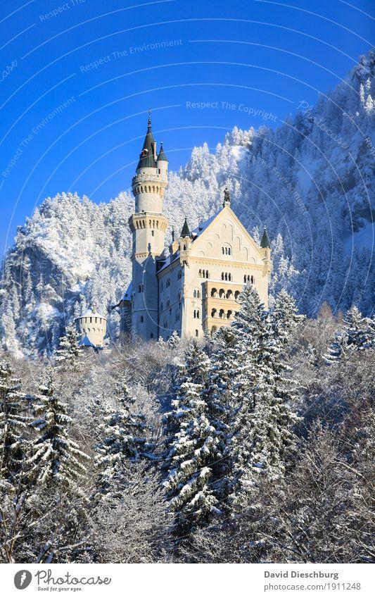 Schloss Neuschwanstein Ferien & Urlaub & Reisen Tourismus Ausflug Sightseeing Schnee Winterurlaub Berge u. Gebirge Natur Landschaft Wolkenloser Himmel