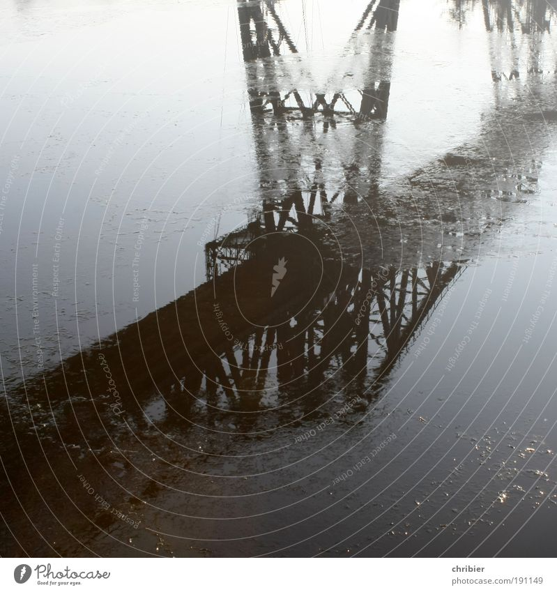 Lilis Brücke Wasser Winter Eis Frost Bauwerk Wahrzeichen Verkehrswege Eisenbahnhochbrücke Stahl alt historisch Reflexion & Spiegelung Tragfähigkeit