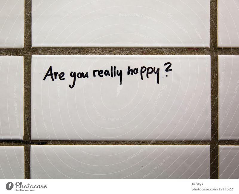 Frage des Tages Wand sprechen Traurigkeit Gefühle Lifestyle Gesundheit Mauer Schule Denken Arbeit & Erwerbstätigkeit Zufriedenheit Schriftzeichen Erfolg