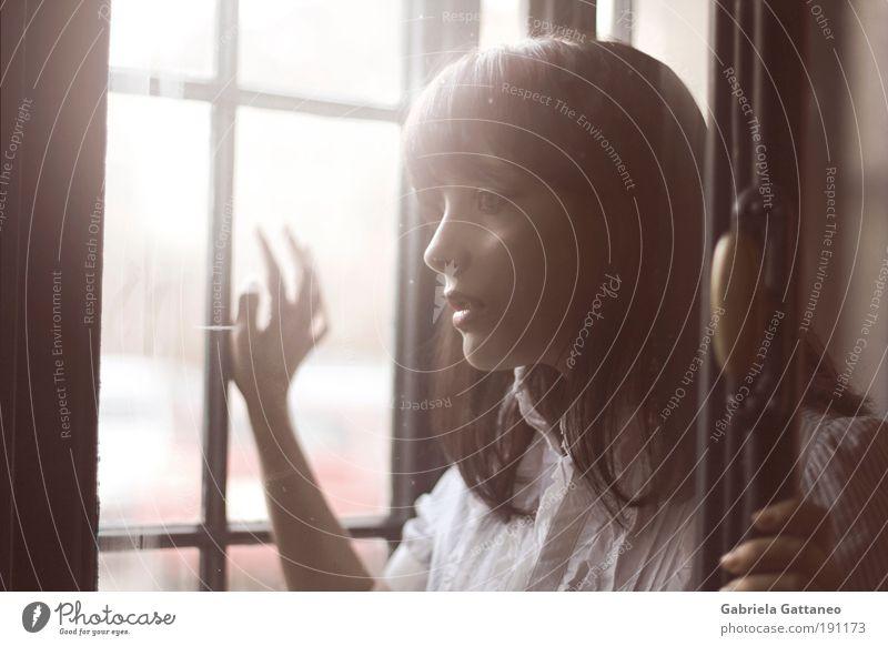 Regung feminin Haare & Frisuren 1 Mensch Hemd beobachten Blick dunkel schön trist braun Gefühle Stimmung Romantik ruhig Selbstbeherrschung träumen Traurigkeit